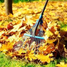 Entretien parcs et jardins Gargowitch espaces verts à lunel Montpellier et dans le Gard (34)